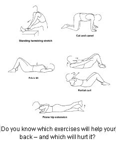 Back Pain Excercises