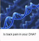 Back Pain and Genetics