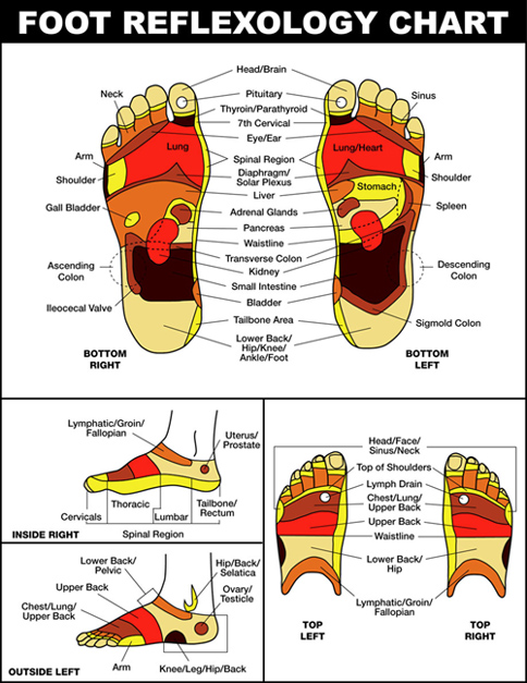 Foot Reflexology Chart 2
