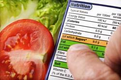 Calorie Restriction Diet